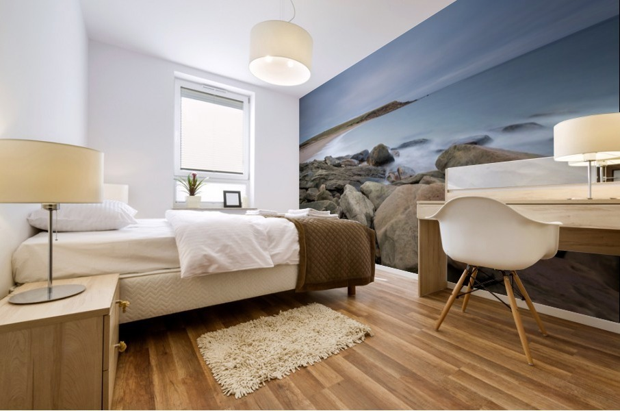 Sands of Whale Cove Mural print