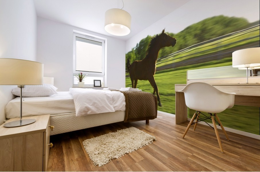 Horse Galloping Mural print