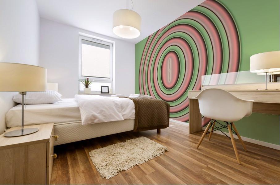 Concentric Circles Mural print