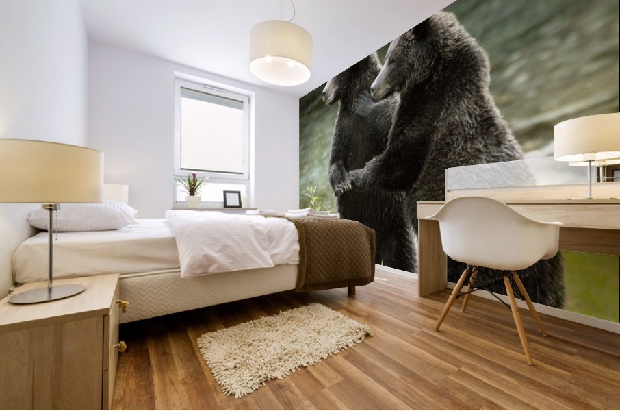 Two Grizzly Bears Mural print