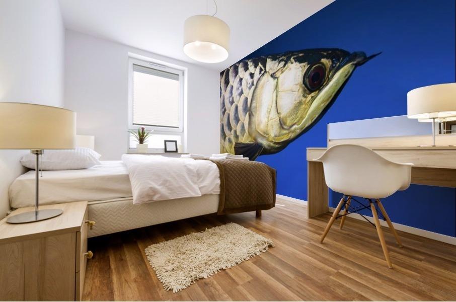 Closeup Of A Fish Mural print