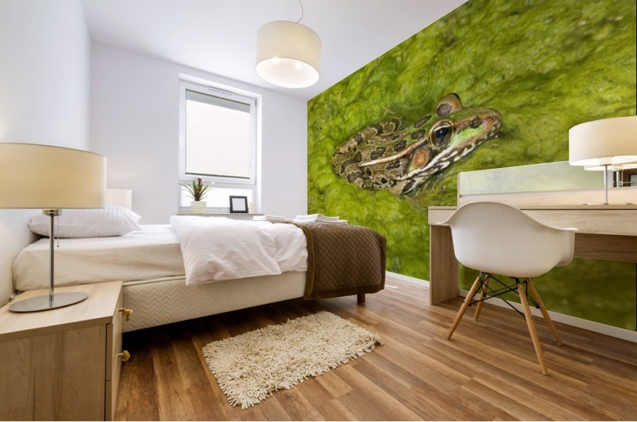 A Rio Grande Leopard Frog Sitting On A Bed Of Algae Mural print