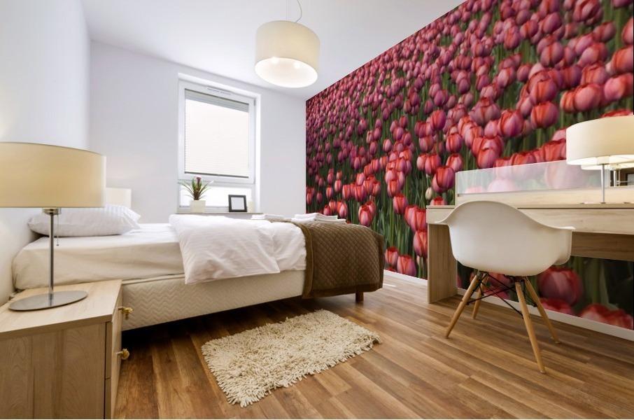Tulips Mural print