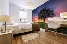 Lonely Tree at Sunset Mural print