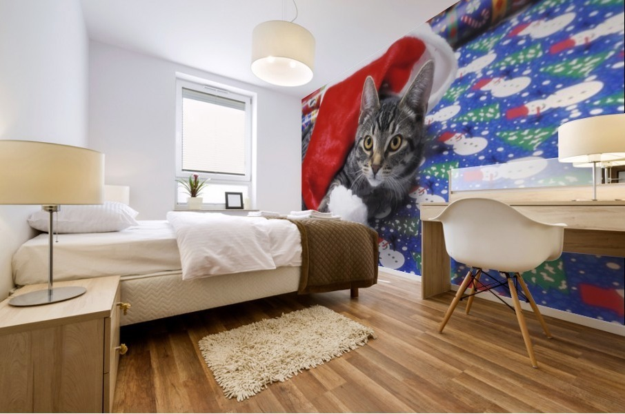 Grey tabby cat with santa claus hat lying on christmas gift wrap;Vancouver british columbia canada Mural print