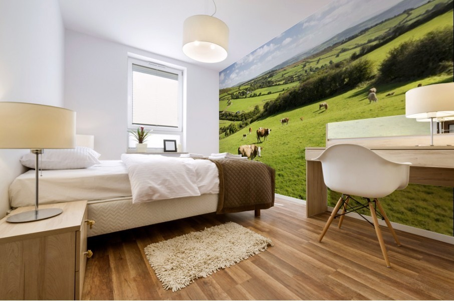 Cattle grazing on lush green hilly pastures with trees separating fields; County Kerry, Ireland Mural print