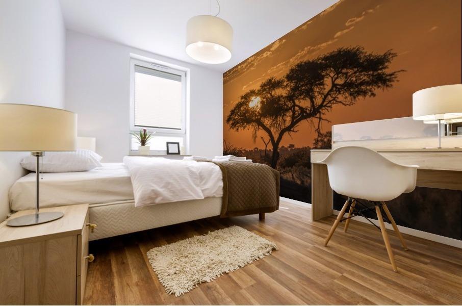 Silhouette of acacia tree at orange sunset; Botswana Mural print