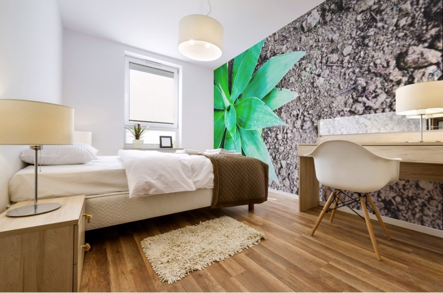 green leaf plant with sand background Mural print