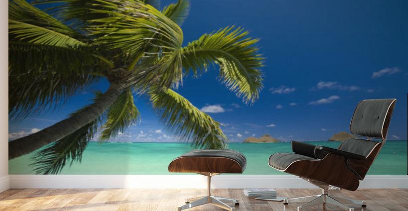 Usa Hawaii Oahu Mokulua Island In Background Lanikai Palm Tree - Palm-tree-furniture-from-pacific-green