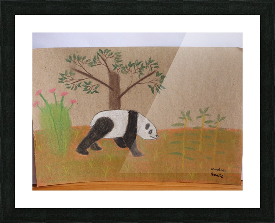 Giant Panda Andres Beate Canvas