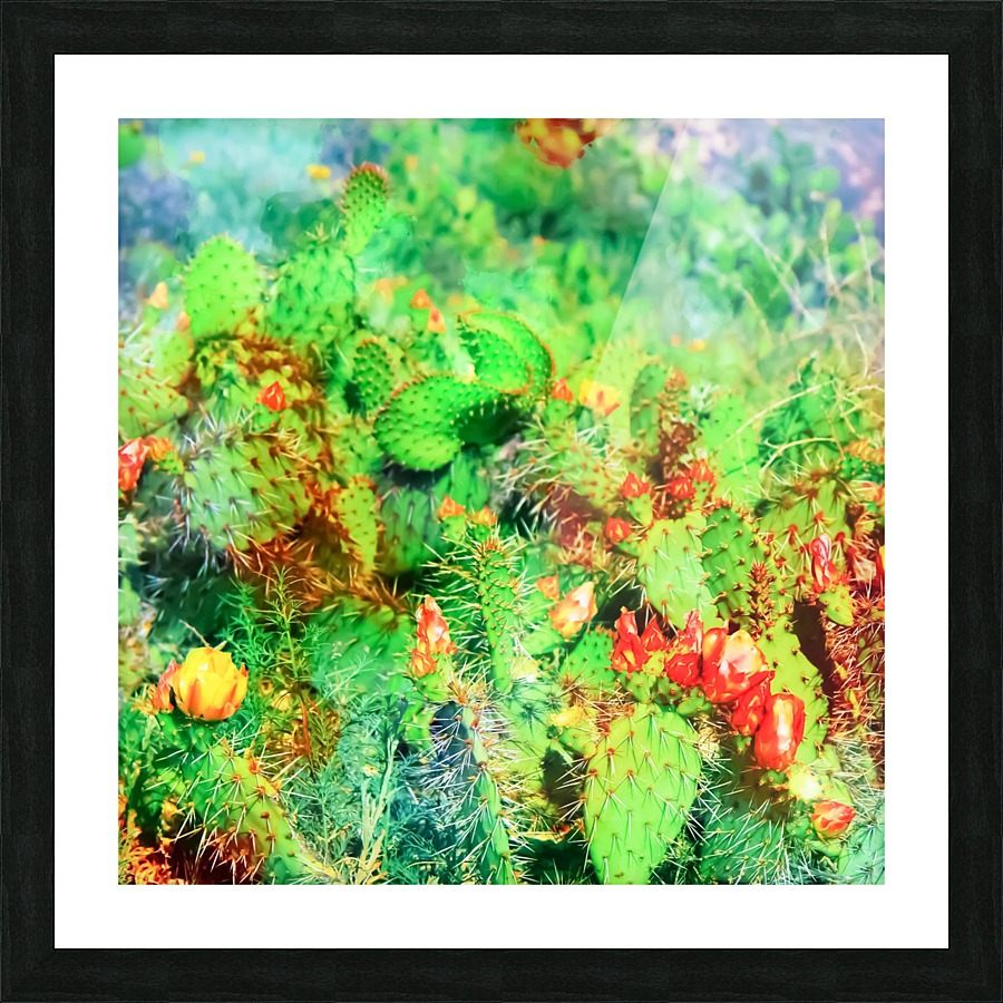Green Cactus With Yellow And Red Flower In The Desert Timmyla Canvas