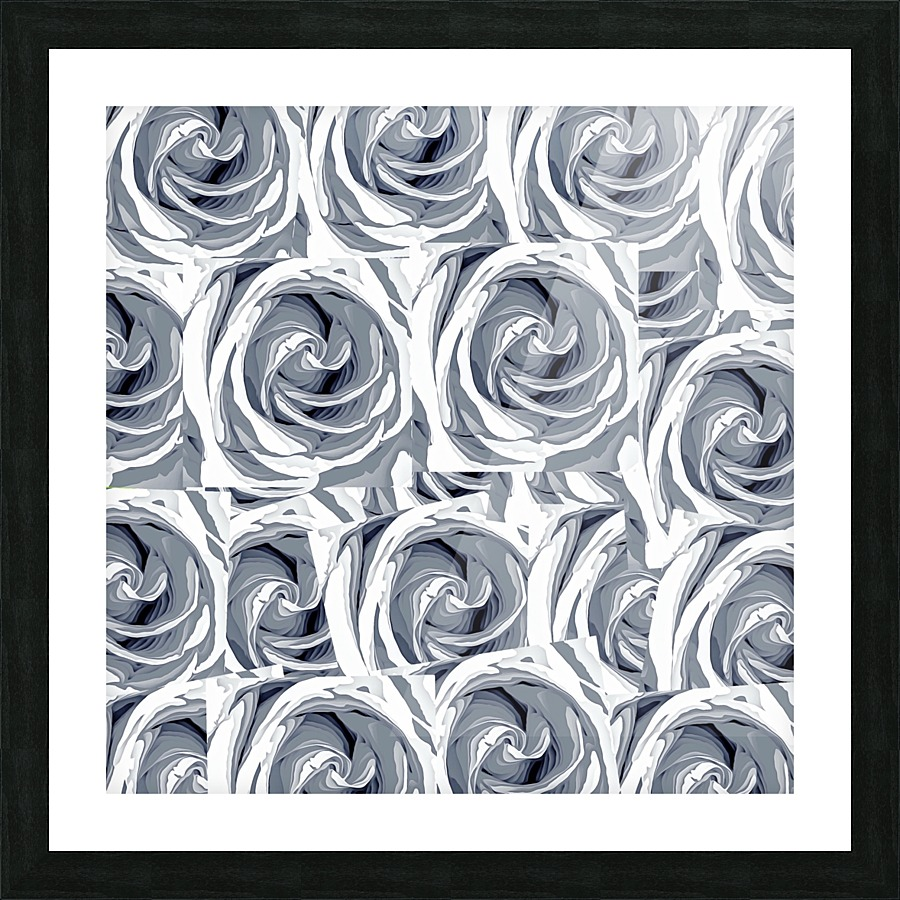 Closeup white rose texture pattern abstract background timmyla closeup white rose texture pattern abstract background picture frame printing jeuxipadfo Gallery