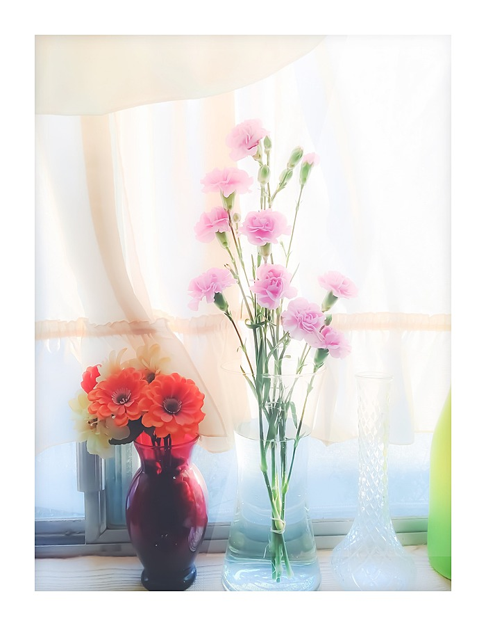 Pink flower and orange flower in the vase with curtain background pink flower and orange flower in the vase with curtain background picture frame printing mightylinksfo