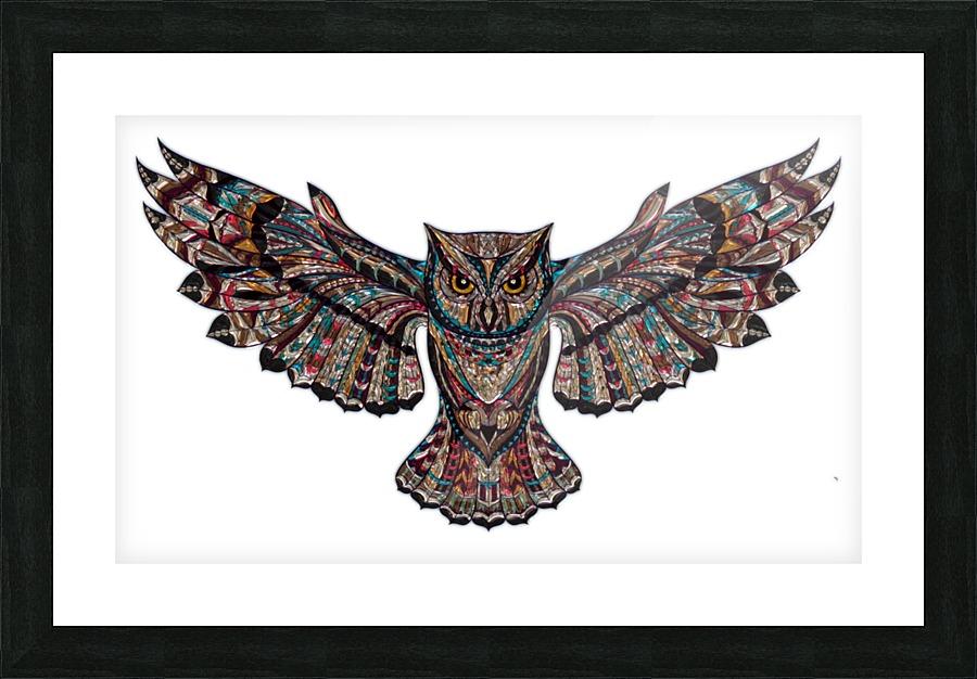 owl - Stock Photography Canvas