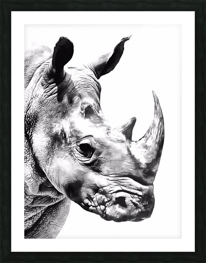 Rhino - Illuminary Artworks Canvas