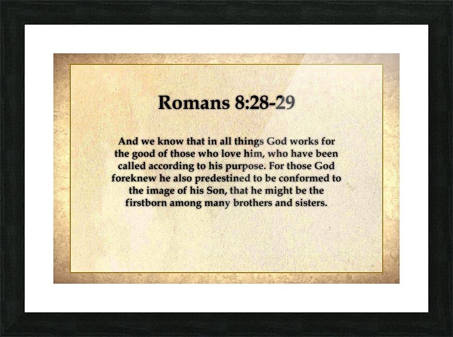 Romans 8 28 29 - Espirit Images Canvas