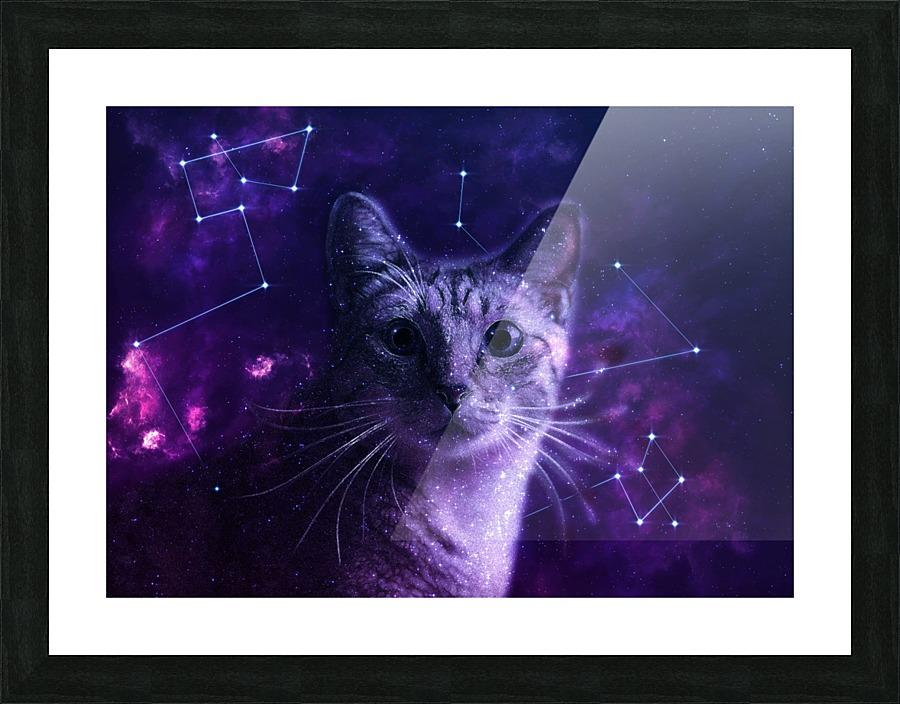 Cute Galaxy Cat Lemoboy Canvas