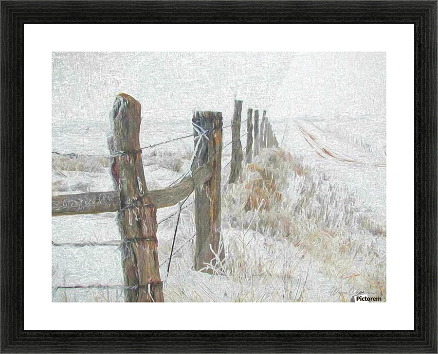 Texas Winter - A WYN CHANCE Canvas