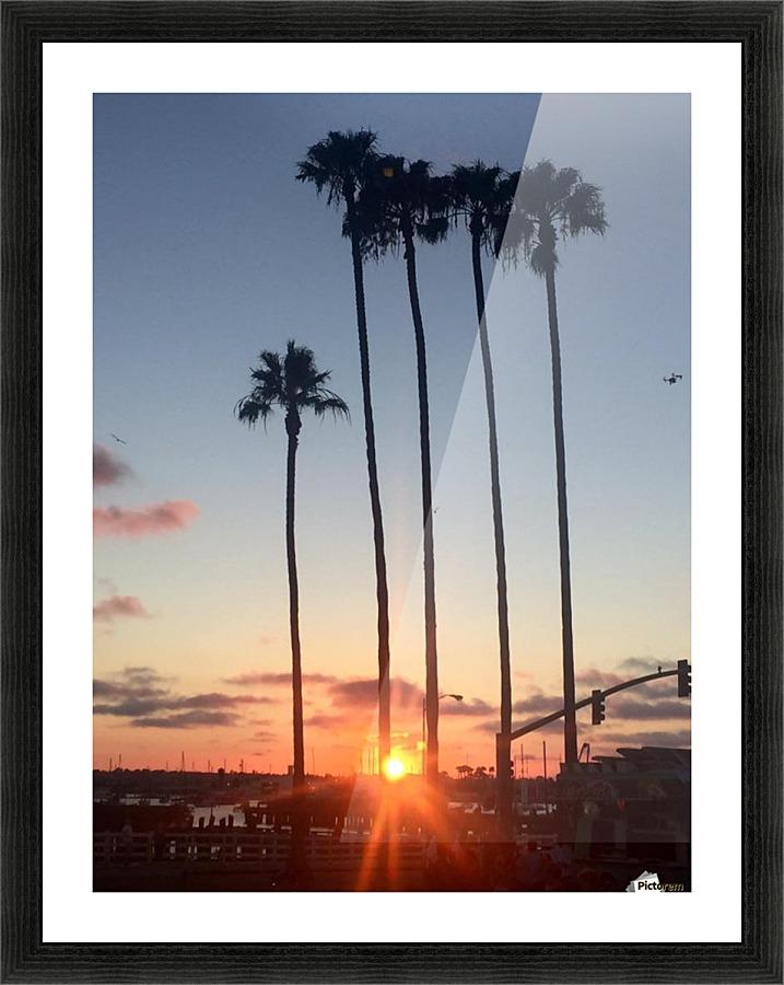 San Diego, - MonicaVee Canvas