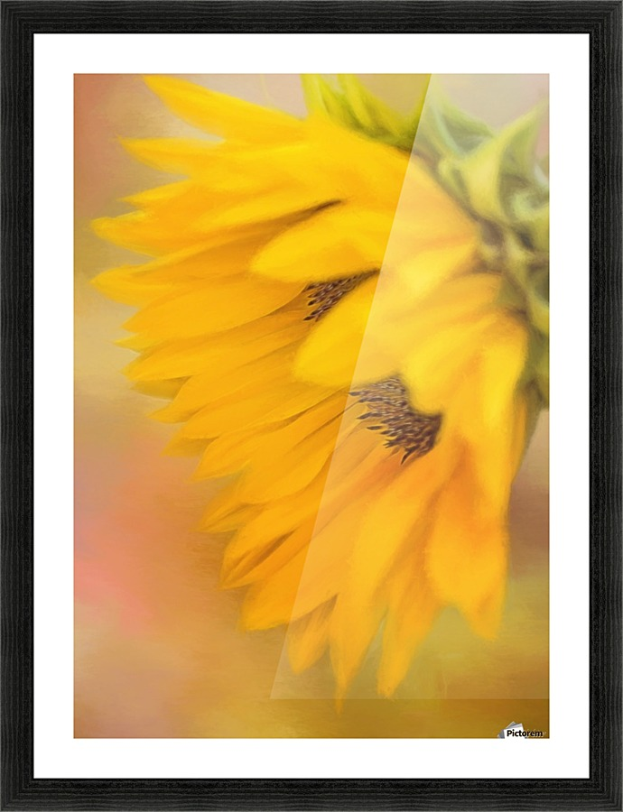 Bring Sunshine - Sunflower Art by Jordan Blackstone - Jordan ...