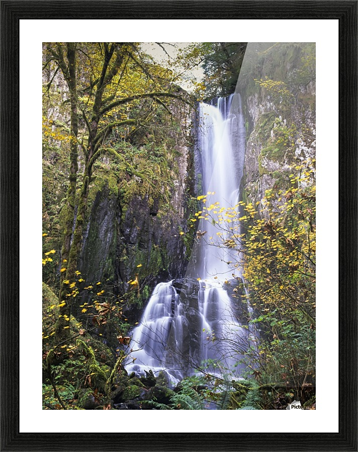 Lower Kentucky Falls, Siuslaw National Forest; Florence, Oregon ...