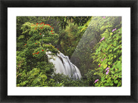 Hawaii, Maui, Hana, Waterfall Surrounded By Tropical Flowers And Plants Picture Frame print