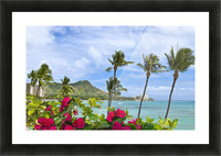 Hawaii, Oahu, Diamond Head, Waikiki, Palm Trees And Bougainvillea Foreground. Picture Frame print