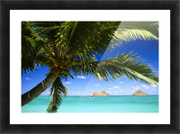 Hawaii, Oahu, Lanikai, Palm Tree Foreground, With Mokulua Islands Background, Sailboat In Turquoise Waters. Picture Frame print