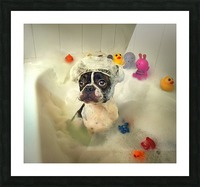 The Bath Picture Frame print