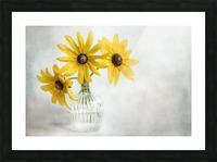 Rudbeckia Picture Frame print