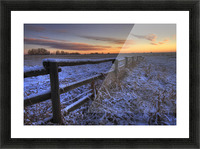Early Morning Snow On A Cattle Fence, Rural Alberta Picture Frame print