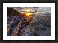 Sunrise Over The Logs At Long Beach, Pacific Rim National Park, British Columbia. Picture Frame print