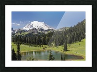 A view of Mount Rainier above Tipsoo Lake, near the top of Chinook Pass on Highway 410 in the Cascade Mountains; Washington, United States of America Picture Frame print
