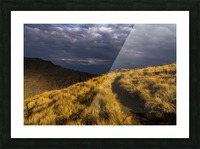 Evening sun highlights Kiger Gorge at Steens Mountain; Frenchglen, Oregon, United States of America Picture Frame print