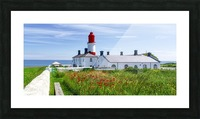 Souter Lighthouse with a field of red poppies in the foreground; South Shields, Tyne and Wear, England Picture Frame print