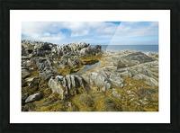 Shoreline along the Bay of Fundy, near Pubnico; Nova Scotia, Canada Picture Frame print