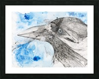 Illustration of a bird's eye and beak with mottled blue and white background Picture Frame print