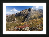 Landscape in the rocky high country of Denali National Park and Preserve, interior Alaska; Alaska, United States of America Picture Frame print