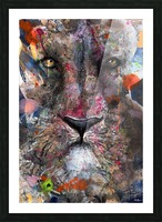 Illustration of a lion's face with colourful splashes Picture Frame print