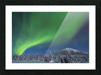 The aurora glows in the sky above Donnelly Dome and a snowy, moonlit landscape, south of Delta Junction; Alaska, United States of America Picture Frame print