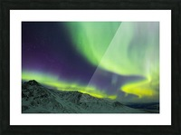 Aurora borealis swirls over mountains within Denali National Park on a very cold winter night; Alaska, United States of America Picture Frame print