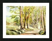 Shady Lane  Picture Frame print