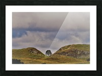 Hadrian's wall tree Picture Frame print