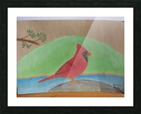Red Cardinal  Picture Frame print