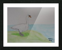 Swan  Picture Frame print