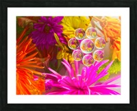 FLOWERS REFRACTION 12 Picture Frame print