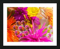 FLOWERS REFRACTION 10 Picture Frame print
