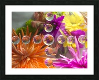 FLOWERS REFRACTION 16 Picture Frame print