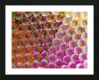 FLOWERS REFRACTION 5 Picture Frame print