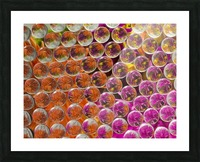 FLOWERS REFRACTION 4 Picture Frame print
